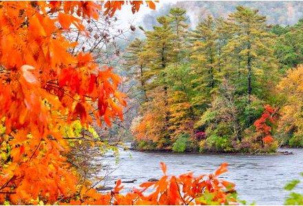 Autumn-in-Conn.
