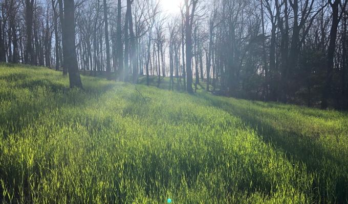 欢迎 Spring OutdoorTraining